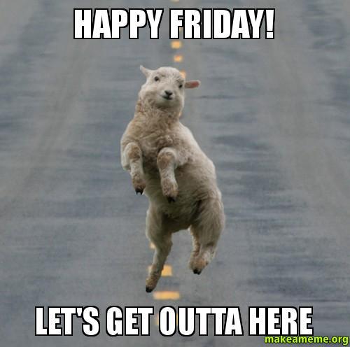 Friday memes