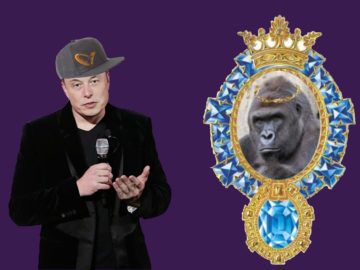 Маск записал рэп про гориллу Харамбе