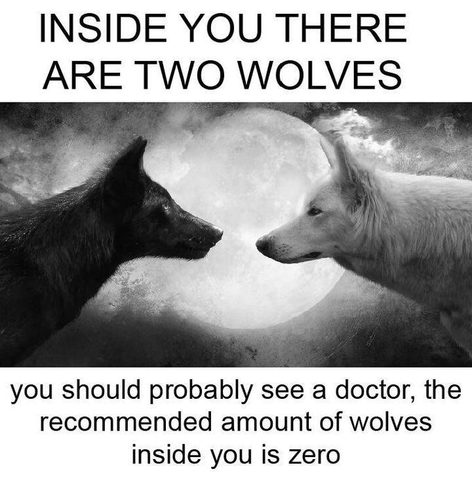 Внутри тебя есть два волка