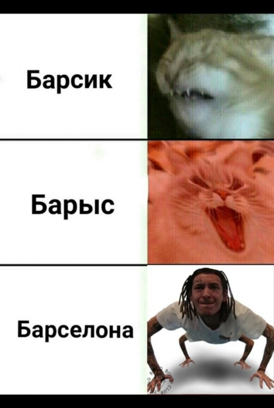Мемы про Кизару в виде паука