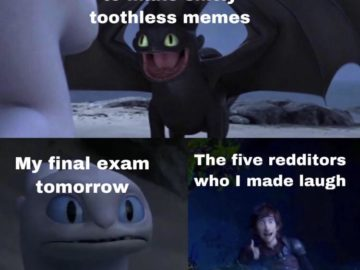 Toothless dragon and Light Fury memes