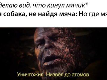 Уничтожил, низвел до атомов мемы с Таносом