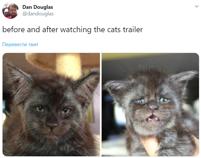 The trailer for the film adaptation of the musical «Cats
