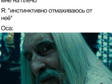 Значит, ты выбрал смерть - мем с Саруманом