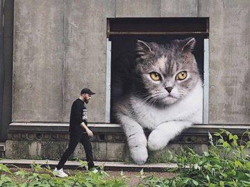 если бы кошки были гигантами