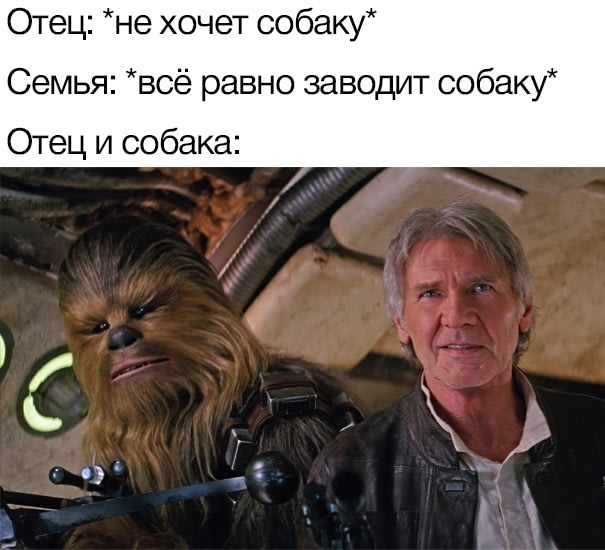 Главные мемы августа 2019 года