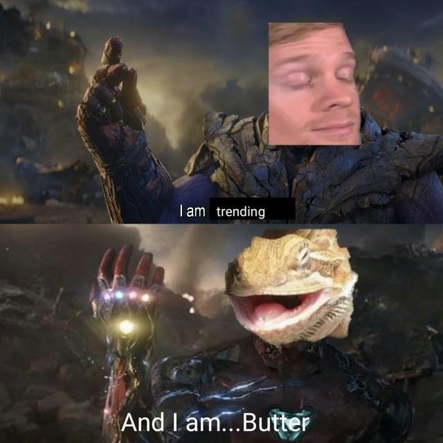 Мемы с ящерицей Маслице на реддите