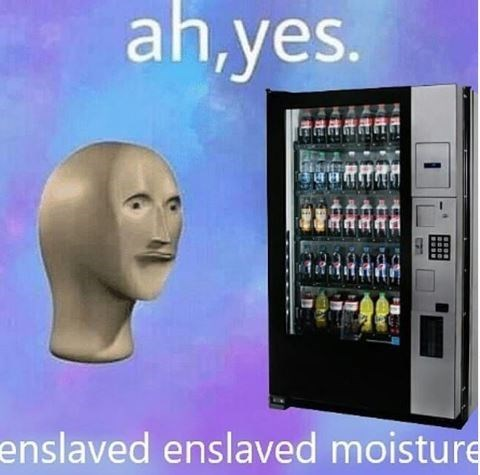 Ah yes enslaved moisture meme