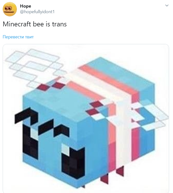 Minecraft bee is trans