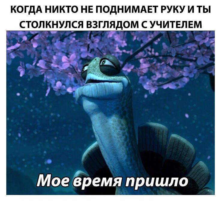 """Мое время пришло - мем с черепахой из """"Кунг-фу панды"""""""