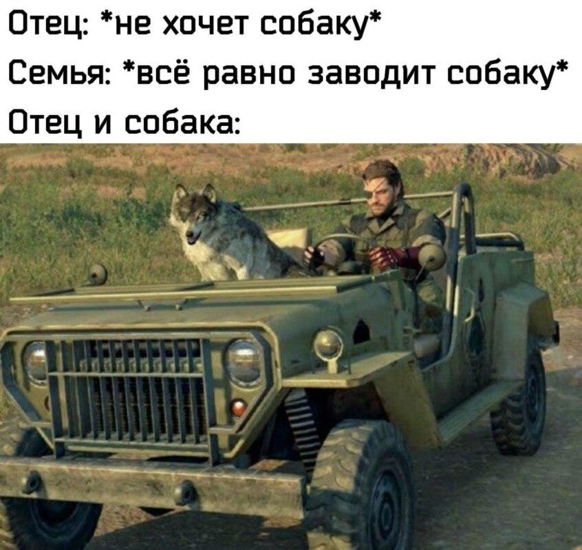 Отец и собака