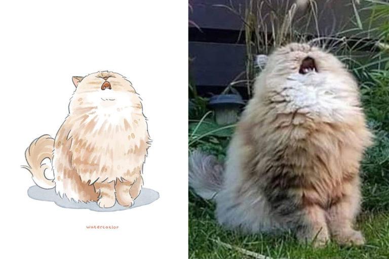 акварельные версии мемных котов