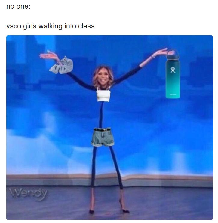 VSCO Girl meme мем