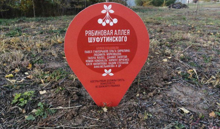 Рябиновая аллея Шуфутинского появилась под Оренбургом