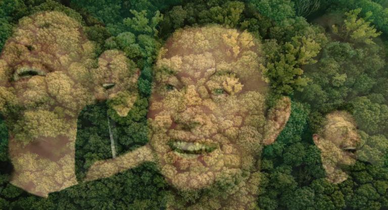 Илон Маск присоединился к движению #TeamTrees и стал супергероем