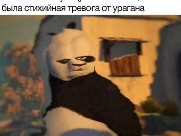 Искаженный Кунг-фу Панда мем