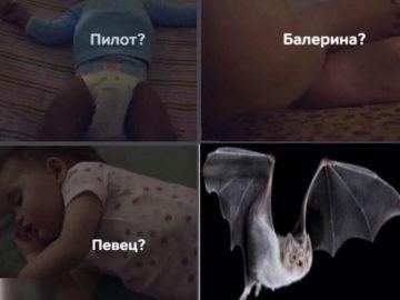 Пилот балерина певец мем