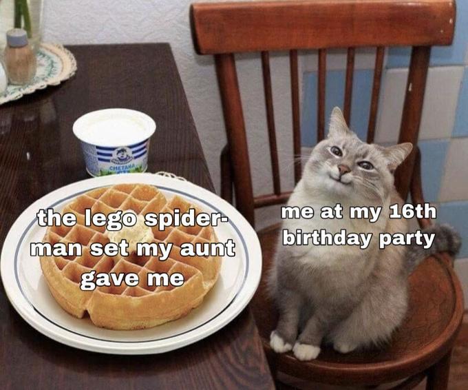 Кот с блинами или вафлями