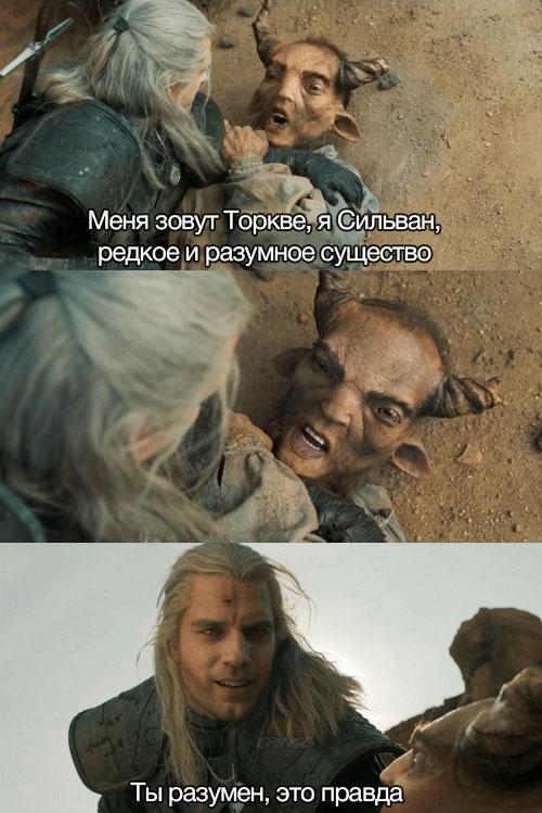 Ты разумен это правда Мем с Торкве из Ведьмака