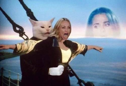 Женщина кричит на кота фильмы
