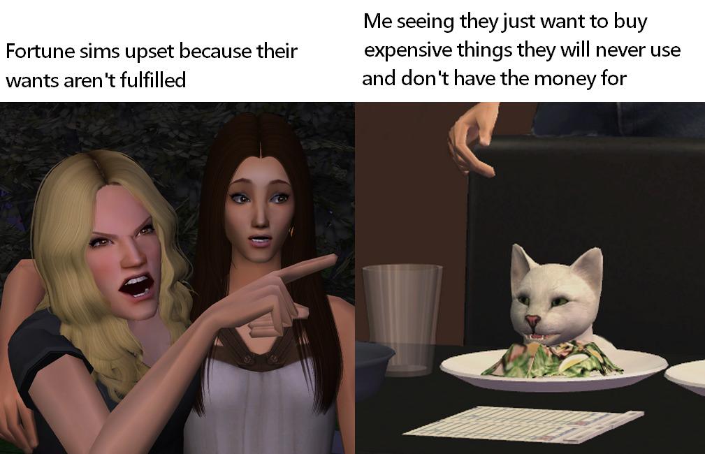 Пародии на мем с котом