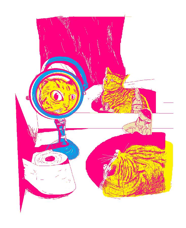 двойное отражение кота