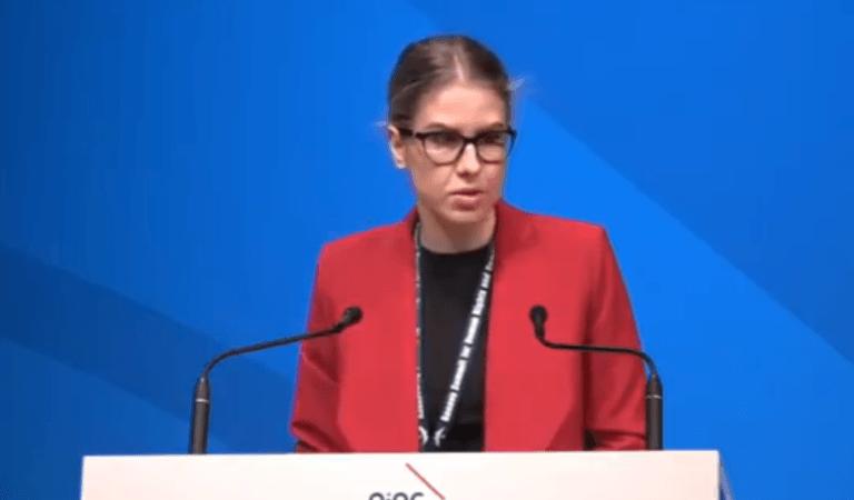 Любовь Соболь высмеяли за очень плохой английский на саммите ООН