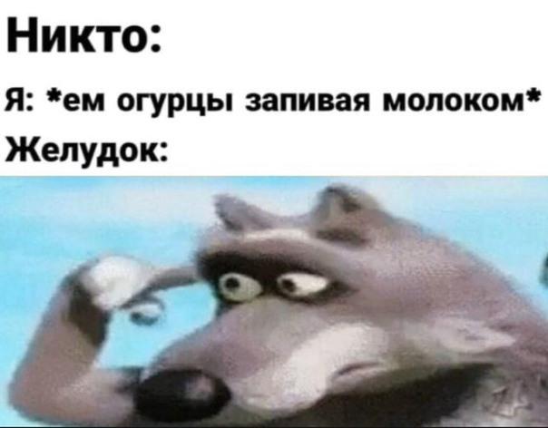 Главные мемы февраля 2020