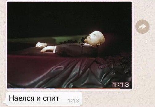Наелся и спит Котенок умер