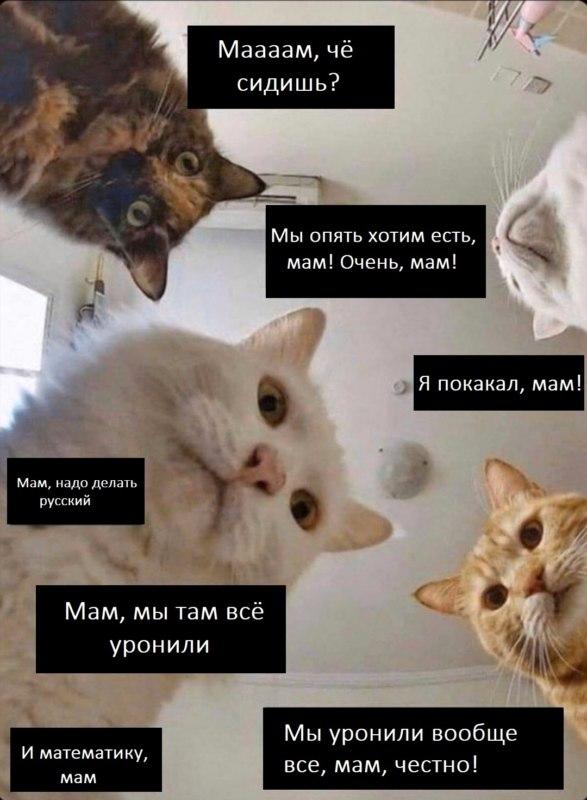 Мамам на карантине посвящается 🤪
