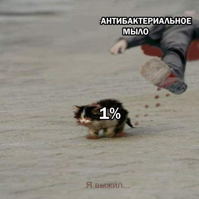 я обязательно выживу мем