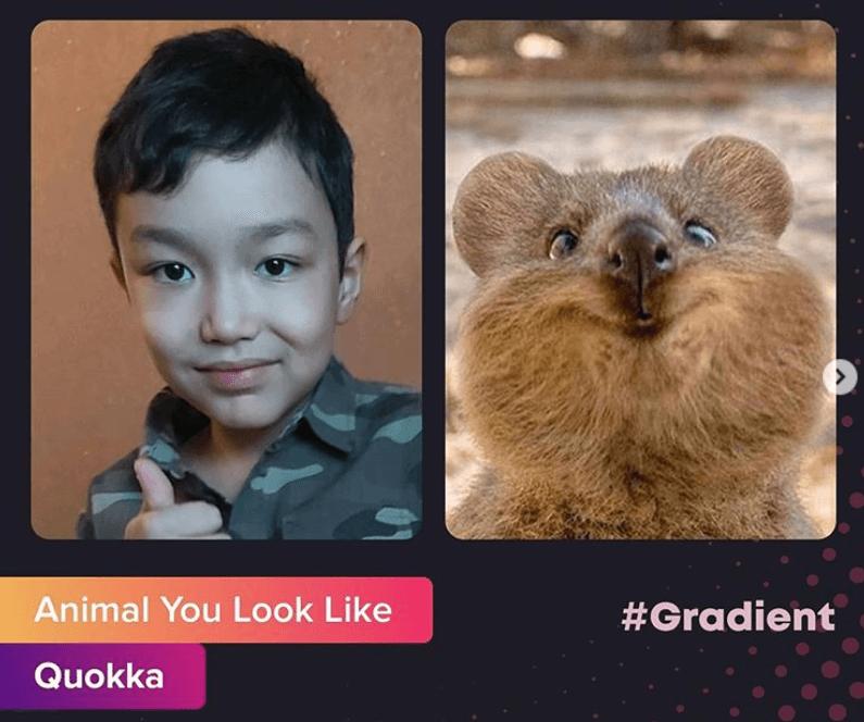 На какое животное я похож