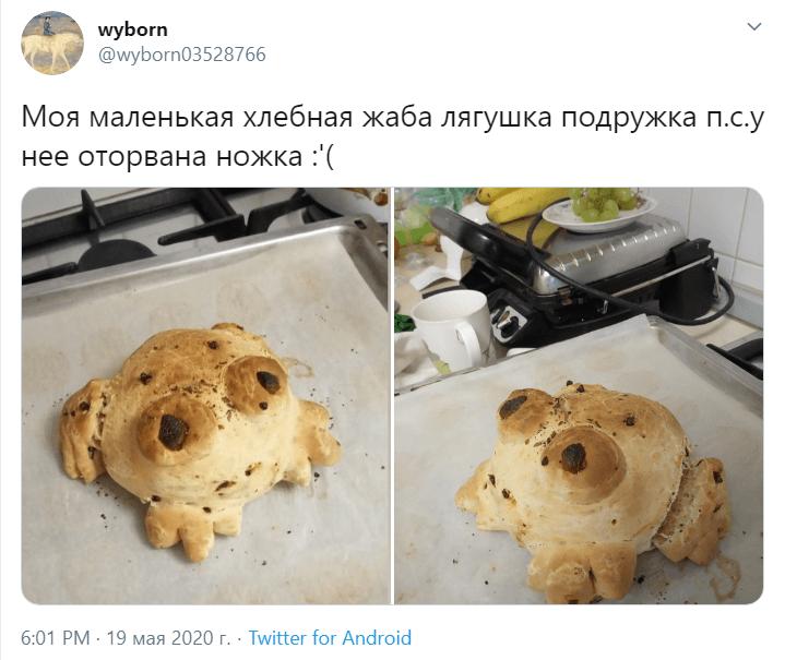 хлебные лягушки