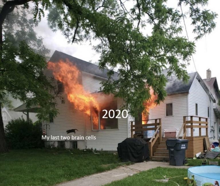 Кошка выпрыгнула из горящего дома