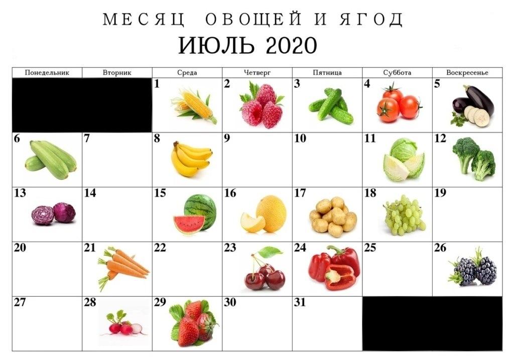 день огурца день помидоров день баклажанов мемы