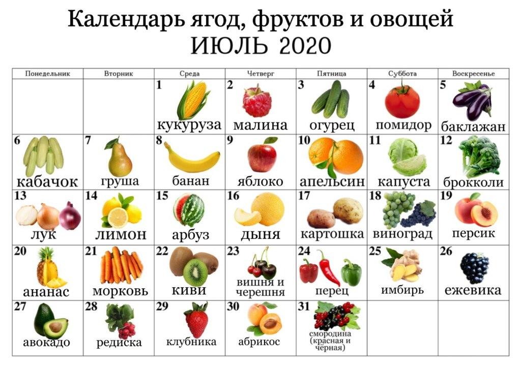 календарь ягод, фруктов и овощей июль