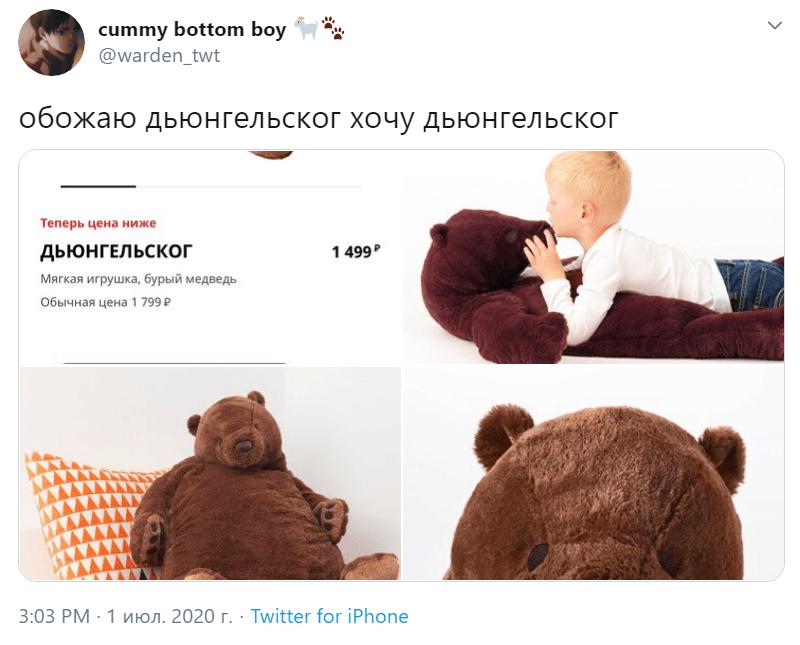 Медведь Дьюнгельског