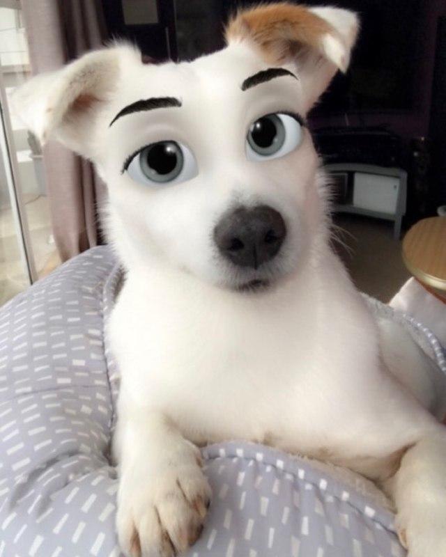 Snapchat Disney