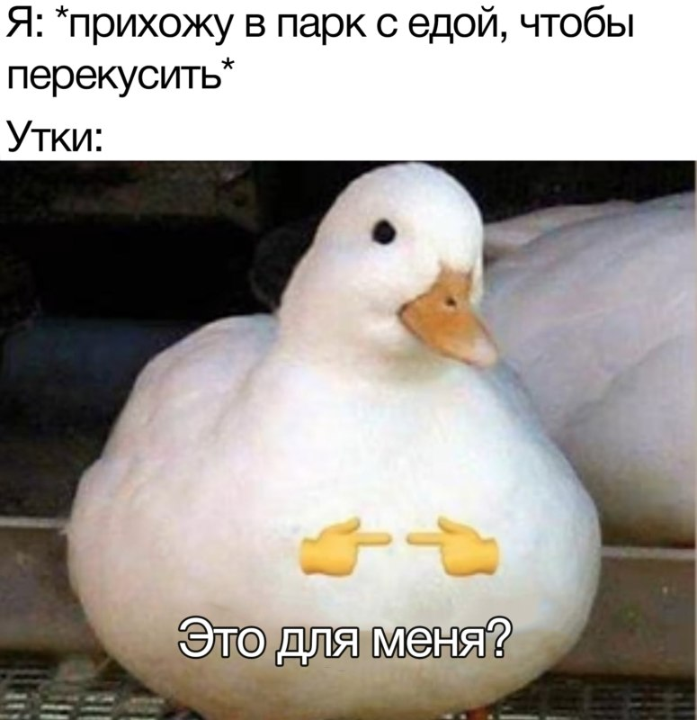 Это для меня?