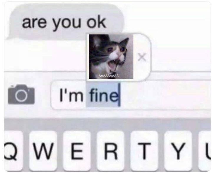 кричащая плачущая кошка умерла