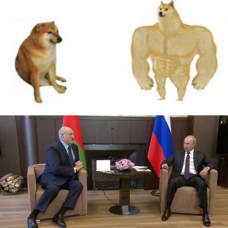 Путин и Лукашенко мемы
