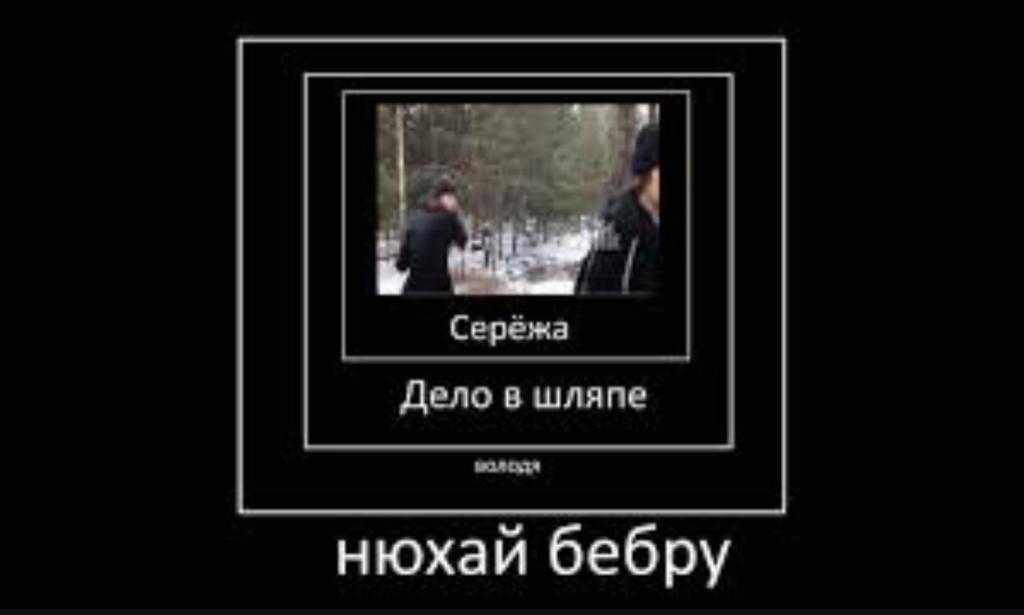 нюхай бебру