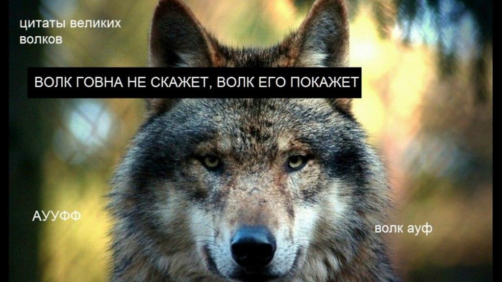 ауфф мемы