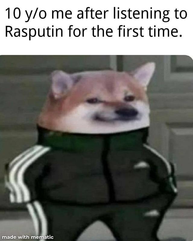 Собака в костюме Адидас