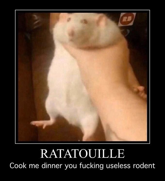 рука держит крысу мем