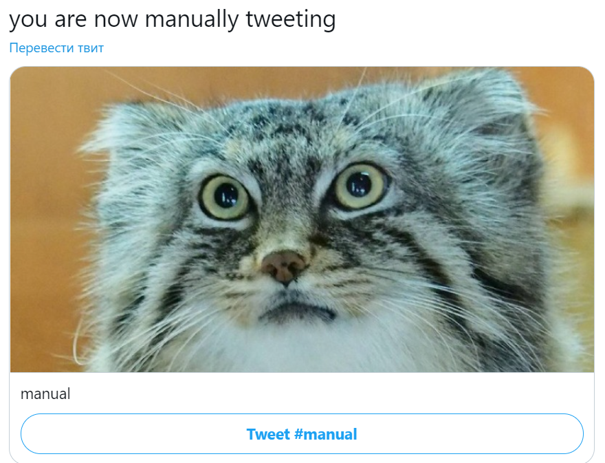 you are manually tweeting