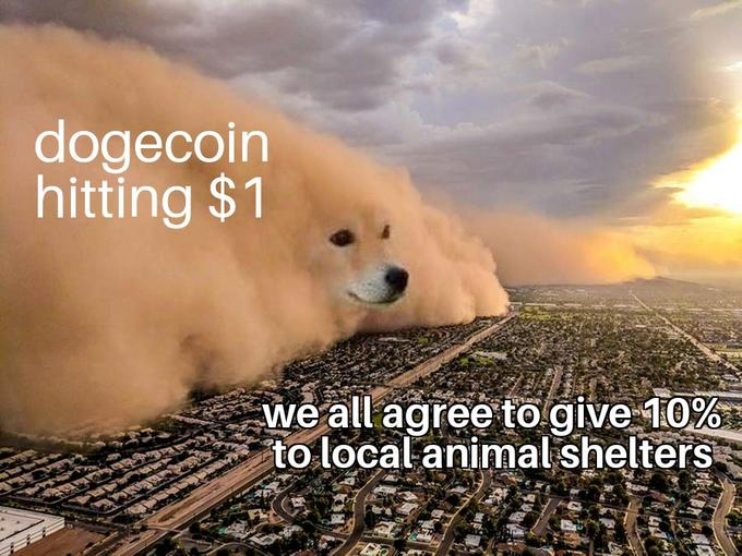 doge coin 1$