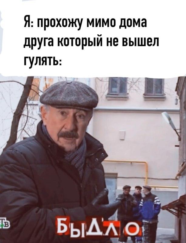 Быдло Каневский