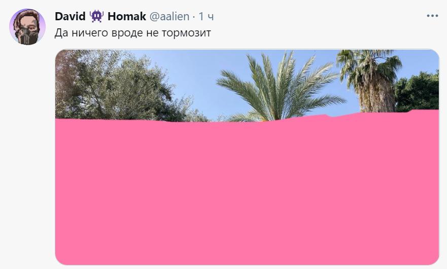замедленный твиттер