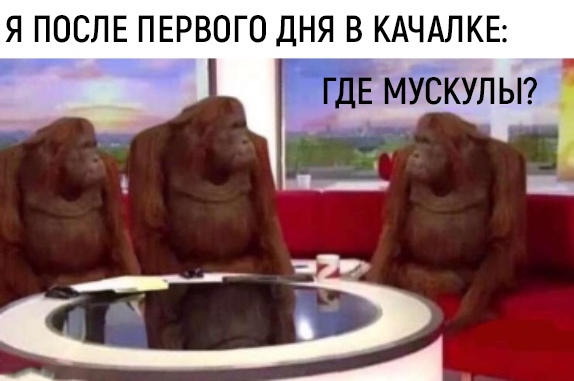 орангутаны мем